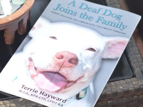 A Deaf Dog Joins the Family Book
